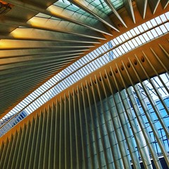 Ribs of the #Oculus (LAKAN346) Tags: downtown structure design curves wtc worldtradecenter newyorkcity nyc manhattan
