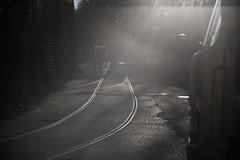 out of the mist (Fibonacchi) Tags: black white rails mist backlight flare leica blackandwhite