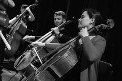 Chelos (Guillermo Relaño) Tags: maxbruch camerata musicalis teatro nuevoapolo madrid guillermorelaño nikon d90 concierto número1 n1 violín violin especial ¿porquéesespecial orquesta orchestra esnayo