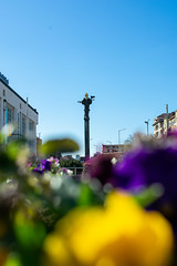 The statue, the flowers and the blue sky (Ani Yordanova Photo) Tags: blue yellow colors colorful spring statue urban photography nikon d3400