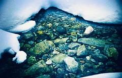 Anglų lietuvių žodynas. Žodis swimmer reiškia n 1) plaukikas; 2) plūdė lietuviškai.