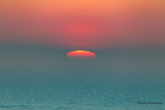 le soleil se meurt dans l' océan (Florent Péraudeau) Tags: le soleil se meurt dans l océan arcachon nouvelle aquitaine canon eos 1 d mark mk iv 4 1d 24105 24 105 is ums f4 f series sigma 60600 60 600 s sport florent péraudeau flox papa fp tls