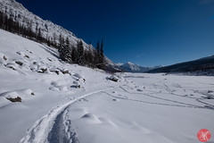 Roadtrip 34 (Kasia Sokulska (KasiaBasic)) Tags: canada alberta winter rockies travel mountains nature jasper np landscape