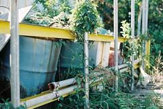 星野町ベイサイド 15 (Hisa Foto) Tags: film ae1 canon