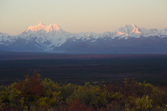 Denali Highway (JR-pharma) Tags: alaska usa united october northwest north west automne fall states america roadtrip road trip photoroadtrip hiking hike 2015 french français nature aventure liberty liberté canoneos6d canon6d mark 1 canon eos 6d classic jrpharma denalihighway denali highway