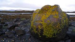 Puilladobhrain beach, Seil (Niall Corbet) Tags: scotland argyll seil coast puilladobhrain boulder beach lichen