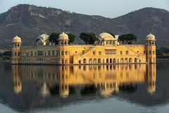 0900 Water Palace (Hrvoje Simich - gaZZda) Tags: outdoors landscape building water reflections yellow palace lake waterpalace jalmahal jaipur india asia travel nikon nikond750 nikkor283003556 hrvojesimich gazzda