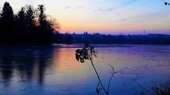 Jégbe fagyott látomás (Szombathely) (milankalman) Tags: winter evening lake frozen cold