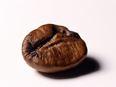 Coffeerista (JaaniicB) Tags: canon 1200d macro eos closeup coffee bean beans brown kit lens extension tube tubes