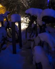 Under the snow... lights (Luca Angelini) Tags: monaco munich neve snow backlight controluce foglie ghiaccio ice leaf light luci night notte silhouette