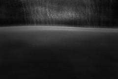 Spirit of Trees (4) (Ger208k) Tags: ireland icm dublin malahide landscape blur intentionalcameramovement abstract trees park minimalism blackandwhite gerardmcgrath