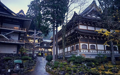 Eiheiji Temple School (KaeriRin) Tags: sony sony7m2 sonyalpha 28mm20 28mm japan japanese castle temple autumn red green building structure leaves tourism travel sightseeing