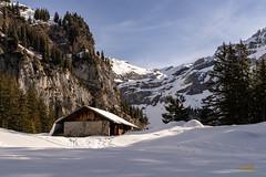 Berghütte zwischen Bergstation Kandersteg und Oeschinensee