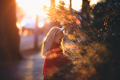 Golden hour (solomiya.p) Tags: gold golden hour day evening sunset sunlight light sun girl child portrait autumn bokeh bokehlicious park children childhood wonderland outdoor 135mm