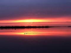 Veerse Meer (Omroep Zeeland) Tags: veersemeer veere vrouwenpolder zonsopgang prachtig
