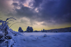 Dietro il muro (Gio_guarda_le_stelle) Tags: snow sunset ice cold breeze landscape mountainscape clouds light trees 4x4 sila