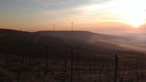 SunriseRun über vernebeltem Selztal und Selzen