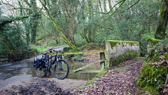 2019 Bike 180, Ride 17, 19th March. (Photopedaler) Tags: 2019bike180 cornishcycling countrylanes bicycle trees woodland fords watersplash