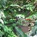 2004-08-20_10-57-06_anon Powe_IMG_3647