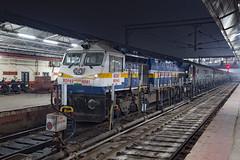 IR WDP-4D 40561 Varanasi Jcn (daveymills37886) Tags: ir wdp4d 40561 varanasi jcn junction