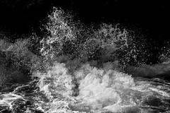 P2262272 Port Cambell (Dave Curtis) Tags: victoria greatoceanwalk blackandwhite ocean 2014 australia em5 omd olympus places september