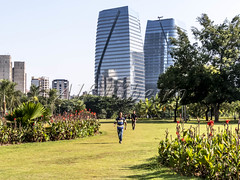Alf Ribeiro 0267-93 (Alf Ribeiro) Tags: brazil brazilian city day flower parquedopovo people saopaulo skyline urban amazing architecture beautiful beauty buildings cityscape culture eco ecological ecology environment fun good grass green holiday landmark landscape leisure metropolis modern nature office outdoor panoramic park pedesrtian place plant preserve public scenic sport tourism tranquility travel trees walking