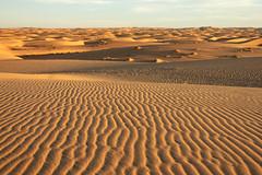 Sand sea (s_andreja) Tags: mauritania chinguetti sand dune desert