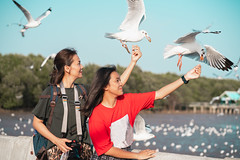 Mother and daughter feeding seagulls (Patrick Foto ;)) Tags: teenage tourist animal asian background bang beach beautiful beauty bird blue crackling cruise daughter eat family feather feed feeding female flying food freedom friend fun girl gull hand happiness happy lifestyle lovely mother nature ocean outdoor people portrait pu scene sea seagull seagulls sky summer sunset thailand together tourism travel vacation water wild wildlife wing woman young samutprakan th