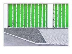 Grün, oder so (heute?) Tags: perspektive architektur fotografie bäume fassaden trees
