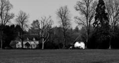 Warborough Green (akatsoulis) Tags: houses britishhouses britain d5300 nikon blackandwhite oxford warboroughgreen wallingford