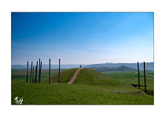 Glauberg (Fujigraf) Tags: glauberg kelten grab fürst berg wall weg wiese natur holz pfahl fuji xt3 23mm