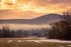 Season is Changing (Nicholas Erwin) Tags: landscape farm field sunrise nature naturephotography outside morning fog foggy spring magenta season waterbury vermont unitedstatesofamerica usa america fujifilmxt2 fujixt2 xf60mmf24rmacro xf60 6024 fujixf6024 greenmountaingarlic twilightfarm fav10 fav25 fav50