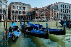 Colorful (Patrick ARFI) Tags: venise venezia venice gondola gondole grancanale italy colorful