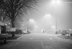 untitled-16 (dvlmnkillatron) Tags: 35mm film kodak bw selfdeveloped analog night evening champaign kodaktmaxp3200 pushed 6400 fog parkinglot noparking privateparking