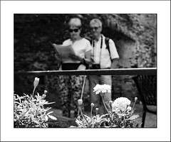 Partage (Panafloma) Tags: 2018 aveyron bandw bw belcastel fr famille france géographie nadine nadinebauduin natureetpaysages personnes techniquephoto végétaux blackandwhite chateau couple fleurs monochrome noiretblanc noiretblancfrance province vieillespierres