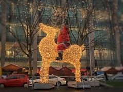 Bye bye Santa - travelling home through the rain ..... (Sockenhummel) Tags: santa weihnachtsmann tauentzien berlin weihnachten christmas rentier beleuchtung weihnachtsbeleuchtung