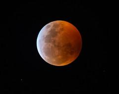 Lunar Eclipse 2019 (VisualUniverse) Tags: nikond850 nikontc14eiii nikon500mmf4efledvr 2019lunareclipse