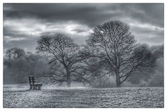 A Bench With A View. (Simon Clarke 612) Tags: peaceful calm serenity serene tranquil monochrome bw daylight day clouds cloud sky landscape grass trees tree field shipleypark park seat bench