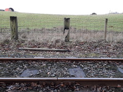 Photo of Burnt Fence Post