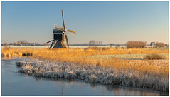 Morning light at Broekmolen (Rob Schop) Tags: wimboon broekmolen alblasserdam oudalblas tele pola hoyaprofilters zuidholland sonya6000 sony55210oss winter goldenhour windmill molen