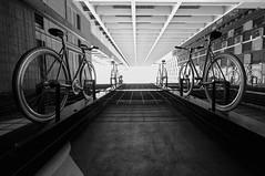 Bikes to infinity (Leon Sammartino) Tags: monochrome mono black white wide angle 1024mm x mount fujinon fujifilm xt3 melbourne bikes sckyscraper fixies hipster lookup building victoria australia art