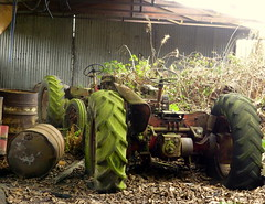 abandoned tractors (Jackal1) Tags: tractors barn abandoned rust overgrowth machines machinery farm farmmachinery old rural forgotten decay