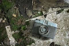 Diana Camera (tfavretto) Tags: abandoned algoma dianacamera diana dirty camera floor forgotten moss photography tile toy brucemines desbarats gordonlake barrishelli