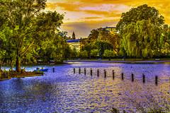 Dreaming (berhanakinoti) Tags: elements water nature landscape park colours art dreaming