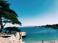pacific grove (vhickey25479) Tags: ocean pacificgrove