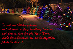 Holiday Greetings (Boganeer) Tags: christmas lights trees holiday festive greetings fredericton