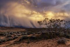 Sunset Rain Storm (rianklong) Tags: canon5dmarkii canoneos5dmarkii canonef2470mmf28liiusm valleyoffire nv nevada usa statepark park valleyoffirestatepark rock red desert rainbow sunset cloud clouds storm rain landscape thunderstorm
