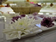 flowers for my Dad (SM Tham) Tags: asia southeastasia malaysia kualalumpur nirvana2 funeralparlour interior altar flowers offerings plates ritual lastrespects chrysanthemum