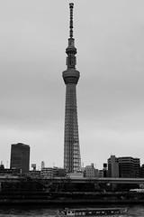 L1010372-2 (Zengame) Tags: lmount lumixs lumixs24105mm lumixs24105mmf4 lumixs24105mmf4macroois leica leicasl leicasltyp601 lマウント sr24105 sl sumidariver sumidagawa architecture japan landmark monochrome river sakurabashi sky skytree tokyo tokyoskytree tower typ601 スカイツリー モノクローム ライカ 日本 東京 東京スカイツリー 桜橋 空 隅田川 東京都 jp