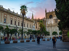Archivo de Indias - Catedral de Sevilla - Plaza del Triunfo (Ennio Fratini) Tags: andalucia españa europa omd omdem1 olympus sevilla architecture goldenhour historicalbuildings landmark luminositymasks micro43 mirrorless monuments people travel viajes seville sevilleprovince spain es